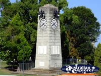 Taree Clock . . . CLICK TO ENLARGE