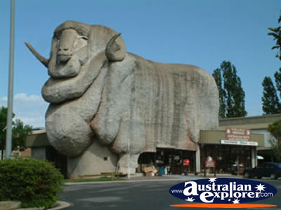 The Goulburn Merino Tourist Attraction photograph is just one of the ...