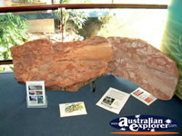 Canowindra, Age O Fishes Museum Display . . . CLICK TO ENLARGE