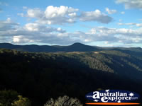 Great shot from Dorrigo Lookout . . . CLICK TO ENLARGE