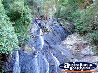 Dorrigo Waterfall . . . CLICK TO ENLARGE