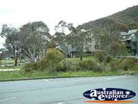 Thredbo Street . . . CLICK TO ENLARGE