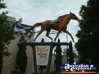 Temora Tribute to Paleface Adios . . . CLICK TO ENLARGE