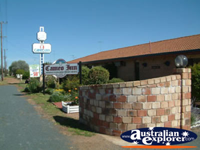 West Wyalong Cameo Inn . . . CLICK TO VIEW ALL WEST WYALONG POSTCARDS