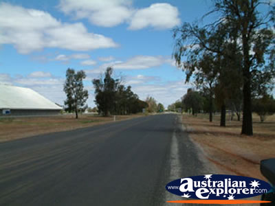 Hillston Road Leading In . . . VIEW ALL HILLSTON PHOTOGRAPHS