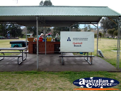 Quirindi Arthritis Branch . . . VIEW ALL QUIRINDI PHOTOGRAPHS