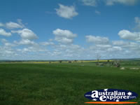 Shot of the Countryside between Young and Boorowa . . . CLICK TO ENLARGE