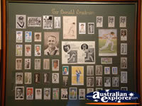The Bradman Museum at Bowral Photos . . . CLICK TO ENLARGE