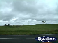 Crookwell Windmill Farm . . . CLICK TO ENLARGE