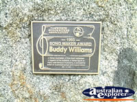 Tamworth Buddy Williams Award . . . CLICK TO ENLARGE