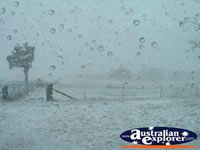 View of the Snow Storm Barrington Tops . . . CLICK TO ENLARGE