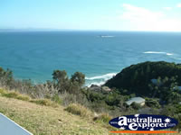 Scenery Surrounding the Byron Bay Lighthouse . . . CLICK TO ENLARGE