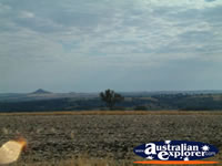 Another View Between Inverell & Warialda . . . CLICK TO ENLARGE