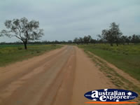 Road Between Coonabarabran and Burren Junction . . . CLICK TO ENLARGE