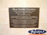 Muswellbrook Is Blue Heeler Country . . . CLICK TO ENLARGE