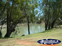 Balranald Caravan Park River . . . CLICK TO ENLARGE