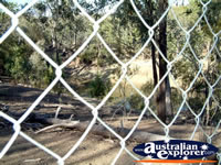 Warialda Cranky Rock Fence . . . CLICK TO ENLARGE