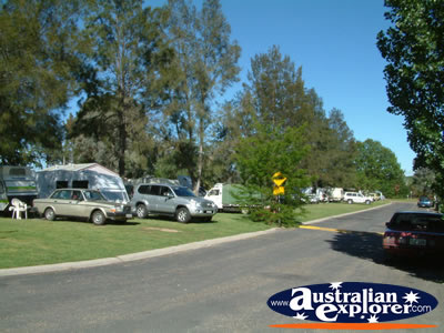 Yass Caravan Park . . . CLICK TO VIEW ALL YASS POSTCARDS