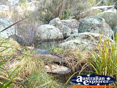 Glen Innes Rocks, Near The Caravan Park . . . VIEW ALL GLENN INNES PHOTOGRAPHS