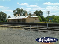 Culcairn Railway Station . . . CLICK TO ENLARGE