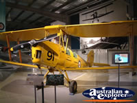 Temora Aviation Museum Yellow Plane . . . CLICK TO ENLARGE