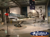 Temora Aviation Museum Shark Plane . . . CLICK TO ENLARGE