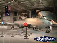 Temora Aviation Museum Silver Plane . . . CLICK TO ENLARGE