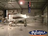 Plane at Temora Aviation Museum . . . CLICK TO ENLARGE