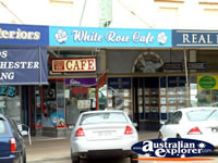 Temora, White Rose Cafe . . . CLICK TO ENLARGE