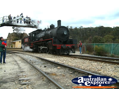 Train at Lithgow, Zig Zag Railway . . . CLICK TO VIEW ALL LITHGOW POSTCARDS