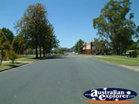 Sunny Deniliquin Street . . . CLICK TO ENLARGE