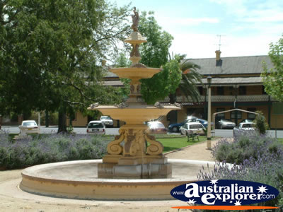 Forbes Fountain . . . CLICK TO VIEW ALL FORBES POSTCARDS