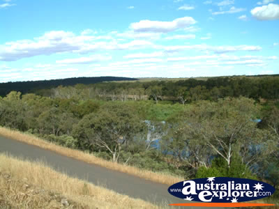 View of Narrandera from Lake Talbot Caravan Park . . . CLICK TO VIEW ALL NARRANDERA POSTCARDS