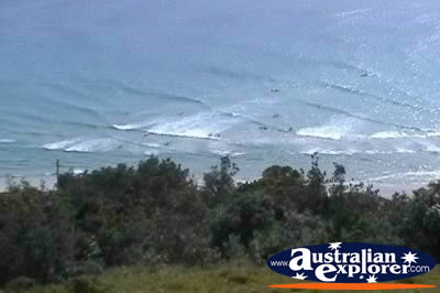 Lennox Head Sea Kayaking . . . VIEW ALL LENNOX HEAD PHOTOGRAPHS