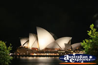 Sydney Opera House at Night . . . CLICK TO ENLARGE
