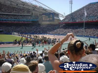 Olympic Stadium Race in Sydney . . . CLICK TO ENLARGE