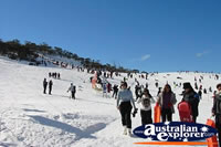 Skiing and Crowds at Snowy Mountains . . . CLICK TO ENLARGE