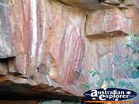 Drawings on the Rock in Katherine Gorge . . . CLICK TO ENLARGE