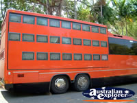 Darwin Bus . . . CLICK TO ENLARGE