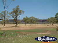 Range from Victoria River Roadhouse . . . CLICK TO ENLARGE