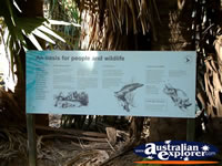 Mataranka Hot Springs Information Sign . . . CLICK TO ENLARGE