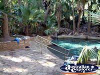 Mataranka Hot Springs pool . . . CLICK TO ENLARGE