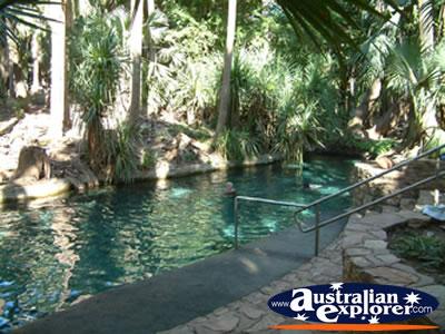Mataranka Hot Springs Virtual Postcard Mataranka Hot Springs Ecard Mataranka Hot Springs
