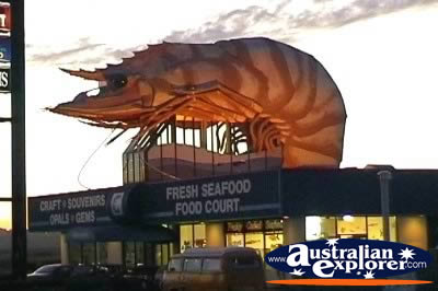 Big Prawn in Ballina . . . VIEW ALL BIG ICONS PHOTOGRAPHS