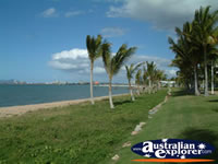 Townsville Beach and Palm Tress . . . CLICK TO ENLARGE