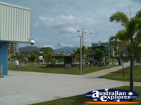 Park in Cairns . . . CLICK TO ENLARGE