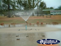 Charleville Duck Pond water feature . . . CLICK TO ENLARGE