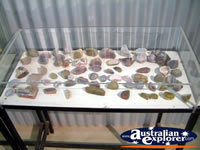 Hughenden Museum Rock and Fossil Display . . . CLICK TO ENLARGE