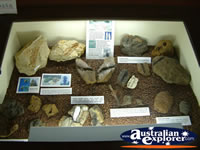 Winton Corfield & Fitzmaurice Centre Rock and Fossil Display . . . CLICK TO ENLARGE