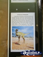 Dinosaur Information Plaque at Winton Corfield & Fitzmaurice Centre . . . CLICK TO ENLARGE